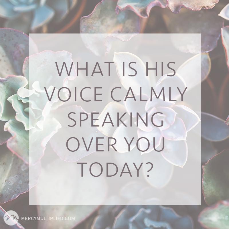 His voice | MercyMultipliedBlog.com