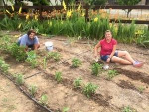 Mercy residents gardening