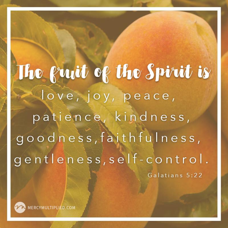 Fruit of The Spirit | Choosing Freedom | mercymultipliedblog.com