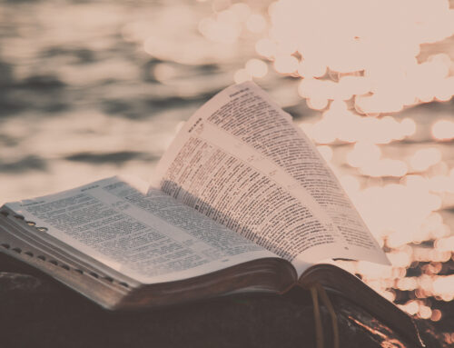14 Scriptures For Mental Health